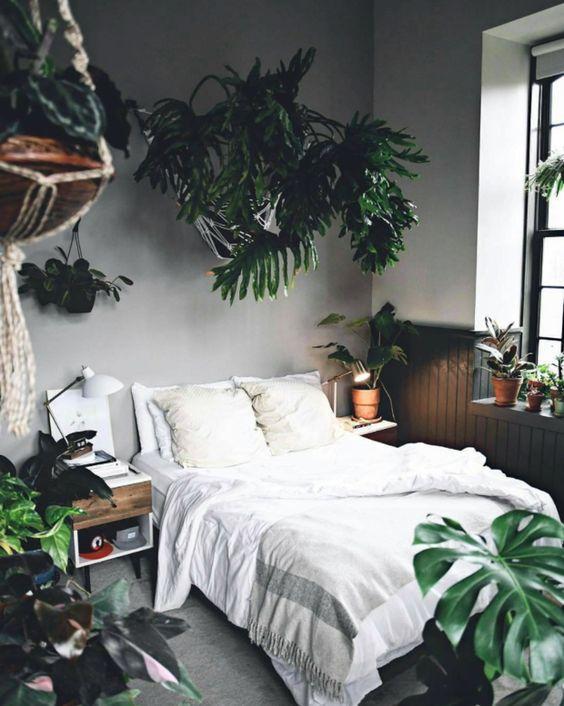 Tropical Stylish Interior